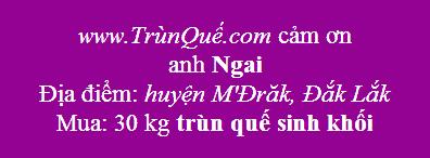 Trùn quế M'Đrăk, Đăk Lăk