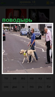 собака поводырь переводит через дорогу слепую женщину