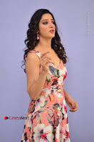 Actress Richa Panai Pos in Sleeveless Floral Long Dress at Rakshaka Batudu Movie Pre Release Function  0045.JPG