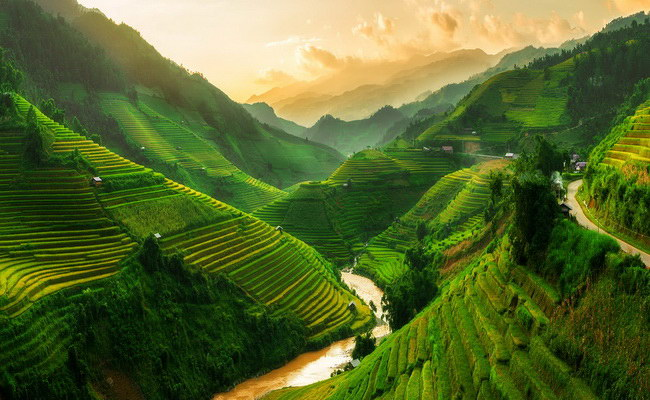 Xvlor.com Sa Pa terraced rice fields are farming on slopes of Hoang Lien Son Mountains