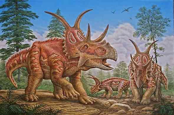 diabloceratops-dinasour-ديابلوسيراتوبس
