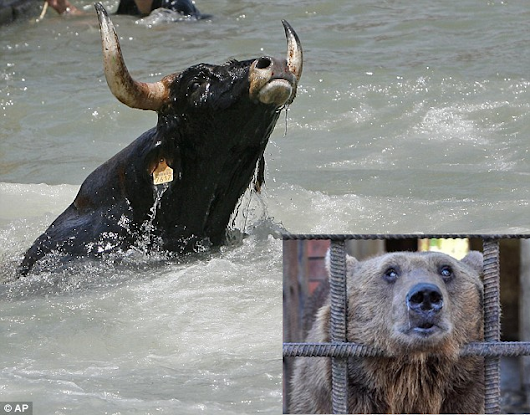 S&P 500 Long Haul Trend Monitor: Bulls Drowning in Profits: Bears Parched