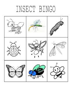 Kids Craft Insect Habitats