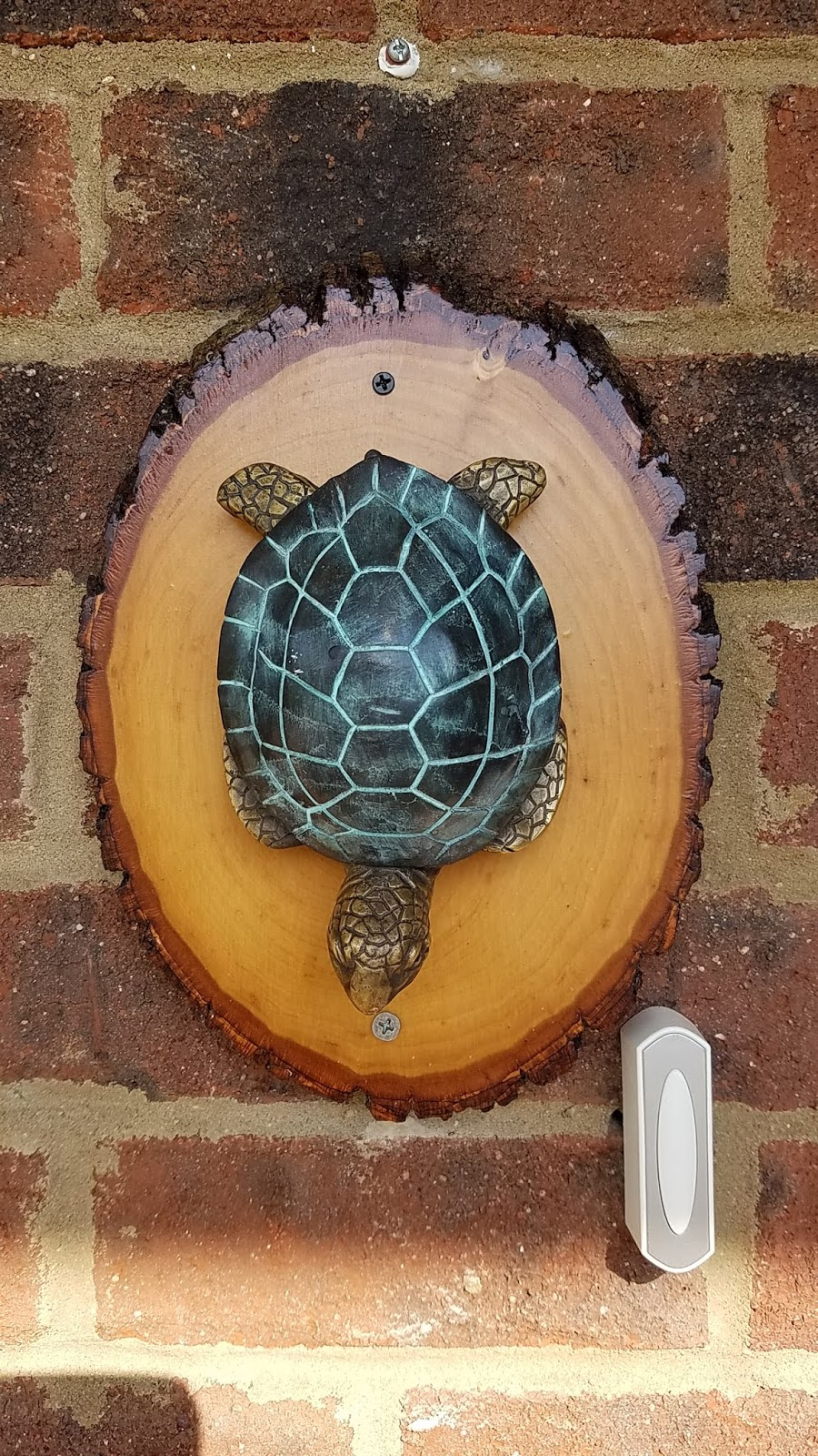Turtle Door Knocker Sandi S Journey August 2018