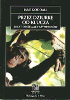 Przez dziurkę od klucza 30 lat obserwacji szympansów