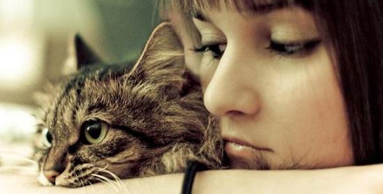 Benarkah Kucing Menyebabkan Kemandulan