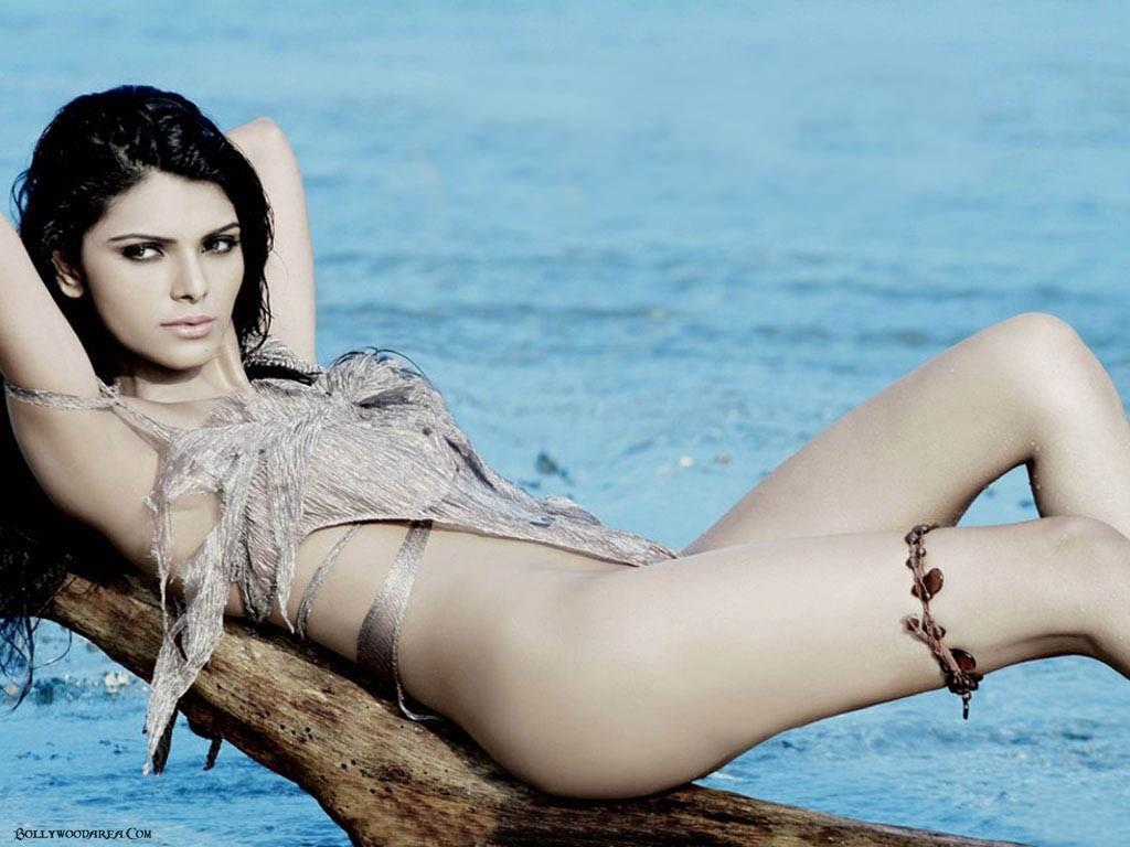 Nangi Indian Actress Sexy Wallpaper - Bolly Actress Pictures-6227