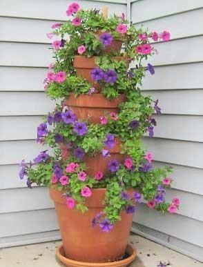 Sugestões para fazer jardins verticais