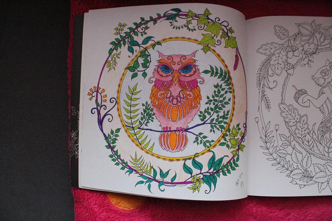 Esintiler Ve Anlar Gizemli Ormanbüyükler Için Boyama Kitabı6 Ve