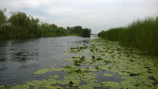 canal sulina sfantu gheorghe delta