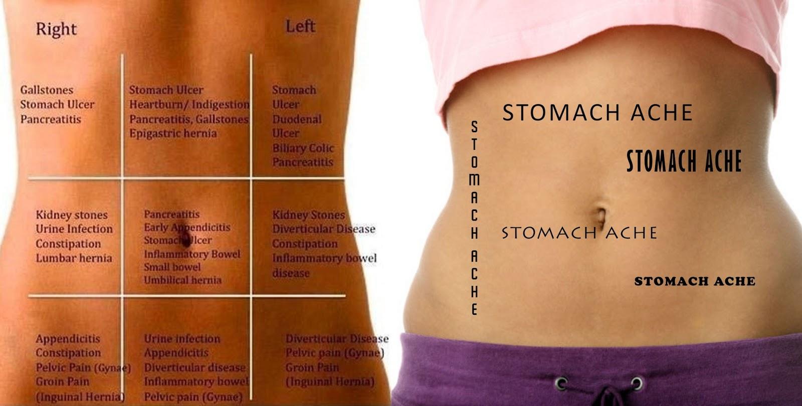 Pit Stop To Wonderland  Anatomy Of A Stomach Ache
