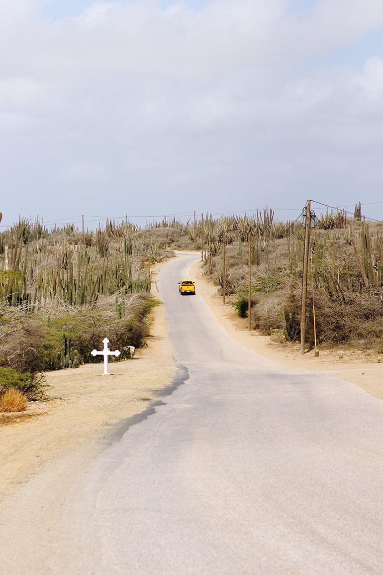 Aruba Road