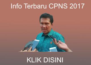 info cpns 2017