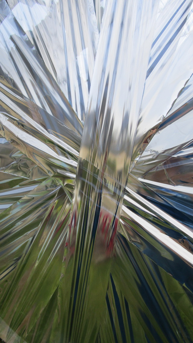 Patrick TALOUARN, Artistes au jardin, Cactus Quimper 2018