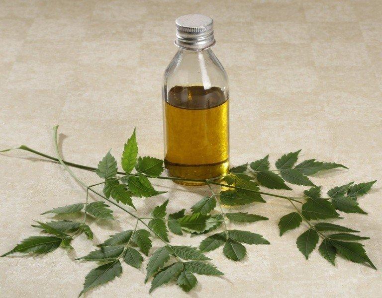 15 cách để sử dụng tinh dầu Neem Cho Da, Tóc tại nhà ~ Tinh dầu Neem,  Organic Neem Oil - Tinh chất thiên nhiên