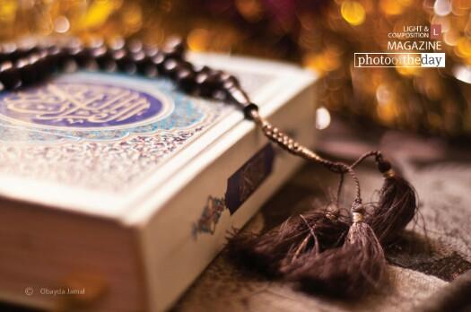 Download Audio Murottal Ustadz Muflih Safitra Rekomendasi Syaikh Shawatfy