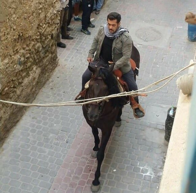 Salman Khan Taking Horse Riding Lessons for 'Tiger Zinda Hai'