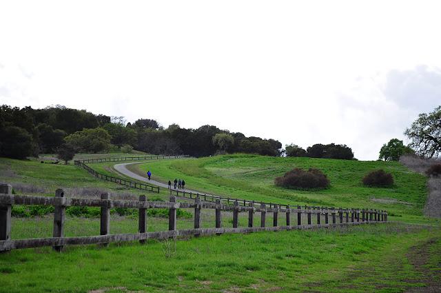 the dish hike stanford palo alto california