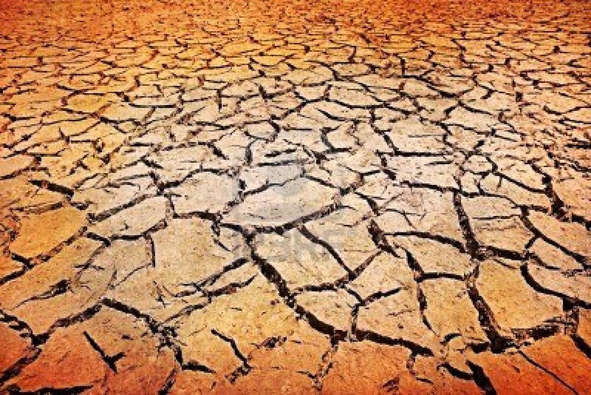 El suelo for Suelos y tipos de suelos