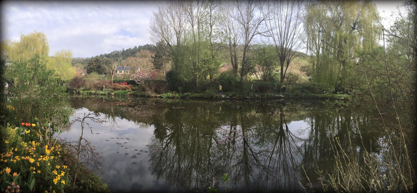 Water lily pond, Giverny, mid April