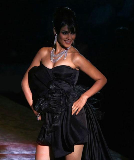 Bikini Tm Genelia Dsouza Hot Photo Gallery-8607