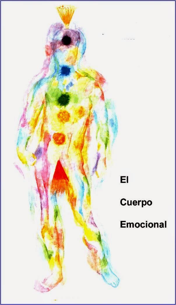Figura en silueta del cuerpo humano en fondo blanco mostrando ubicación de chakras y aura de colores