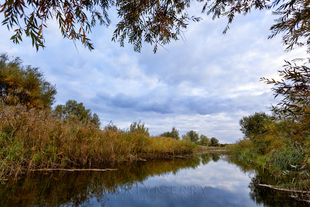 Ouse Fens river runs through this peaceful nature reserve in Cambridgeshire