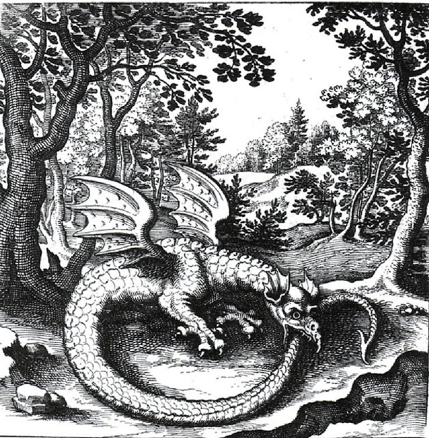 Engraving of a Wyvern as an Ouroboros by Lucas Jennis from De Lapide Philosophico (1625)