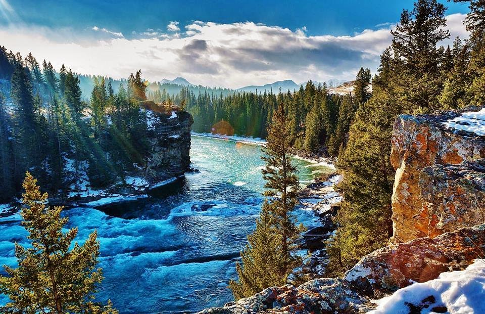 Floresta e rio Canadense
