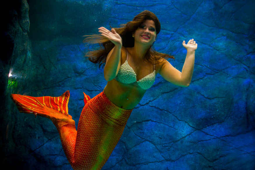 Mermaids Show at Sao Paulo Aquarium In Brazil