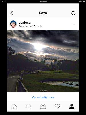 Perfil-empresa-Instagram-mas-estadisticas