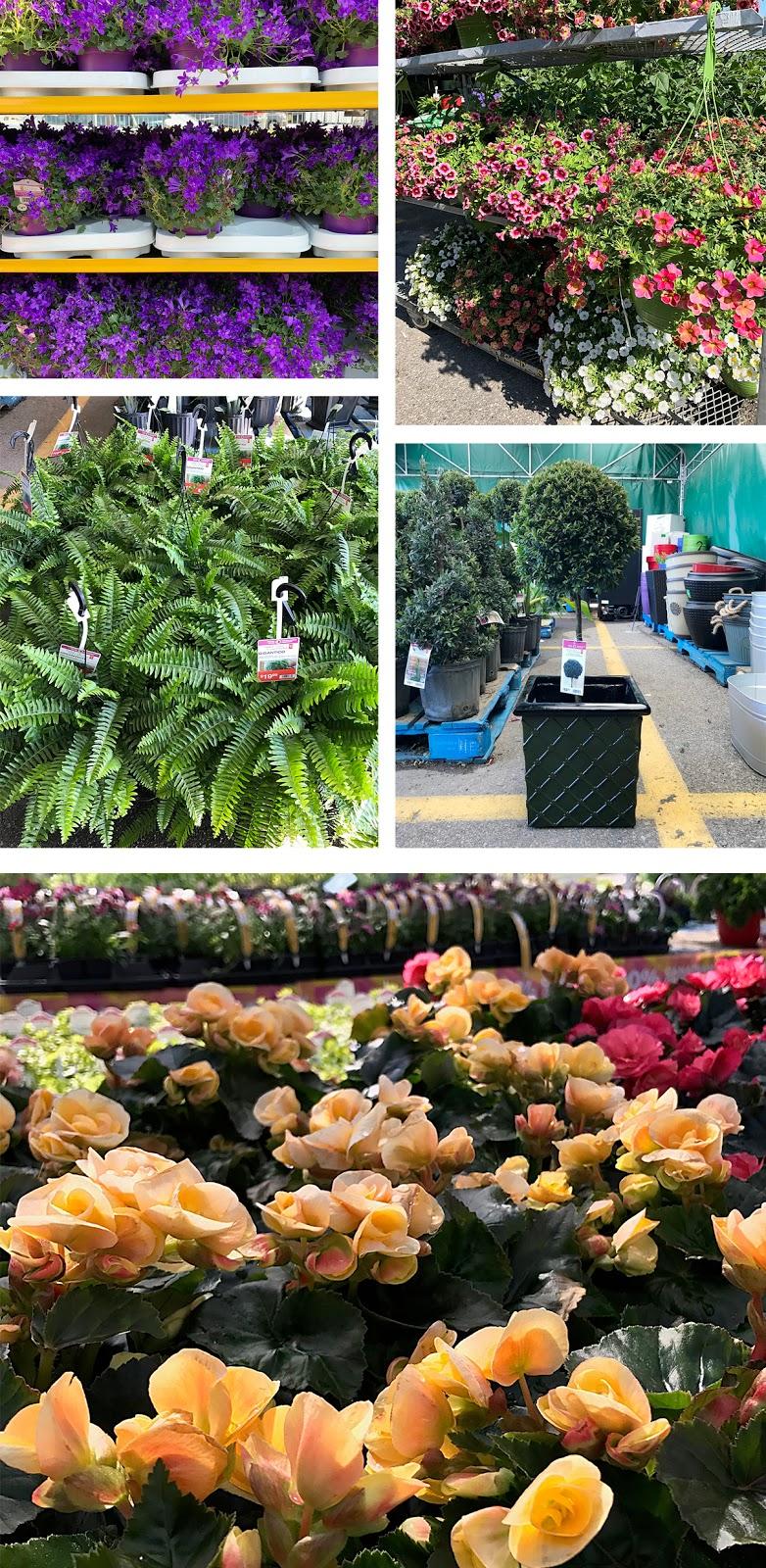 PC® Garden Centre