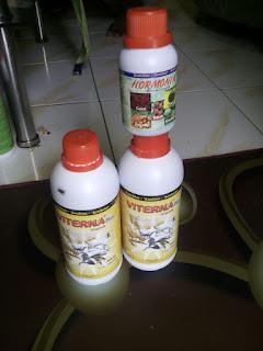 jual vitamin ternak di buleleng bali