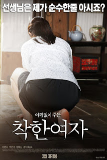 Nice Woman (Korean Movie – 2015)