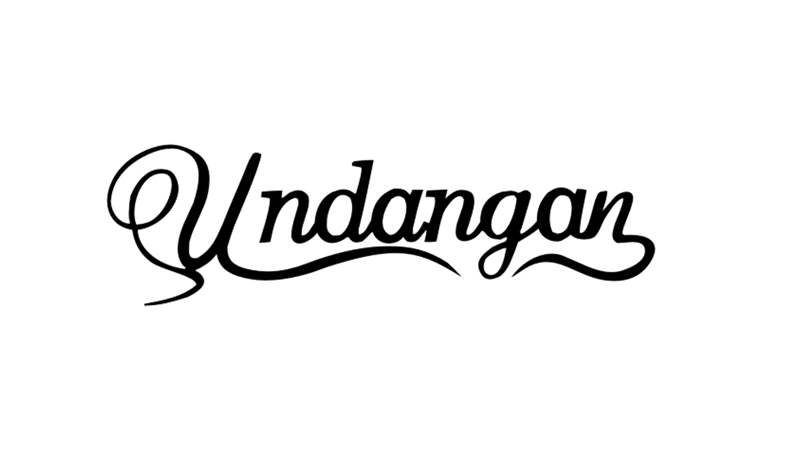 pioneer equalizer ledningsdiagram