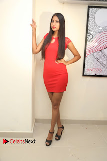 Actress Model Honey Pictures at Anoos Franchise Salon and Clinic Launch  0076.JPG