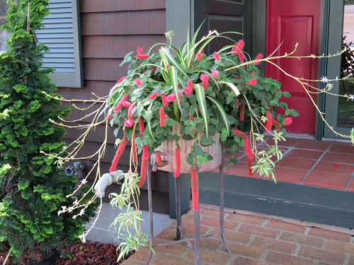 Mason County Garden Tour spidery planter