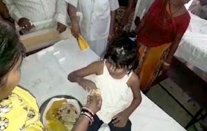 Trovata bambina di 8 anni cresciuta con scimmie in India
