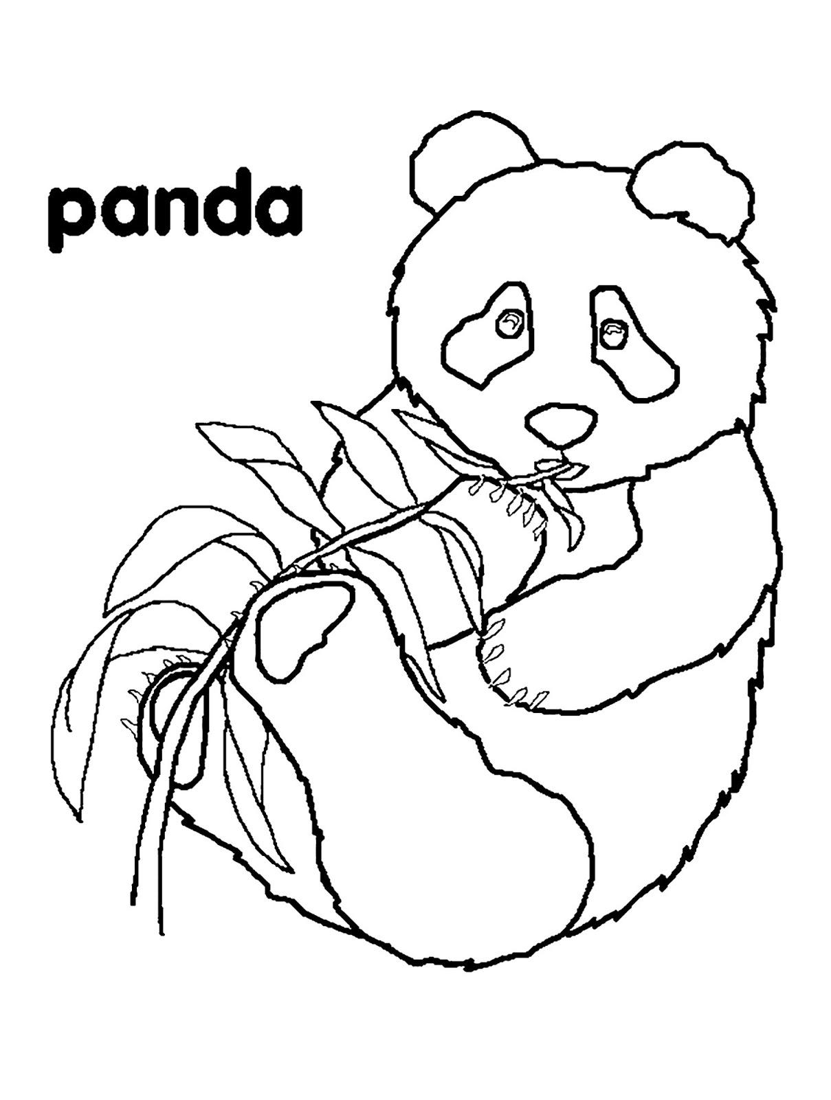 Tranh tô màu con gấu trúc đang ăn