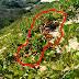 Achado de cadáver nas dunas de Canoa Quebrada