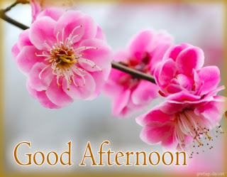 good afternoon pics download