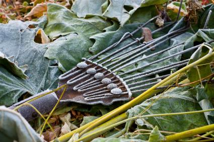 Winterize Your Vegetable Garden