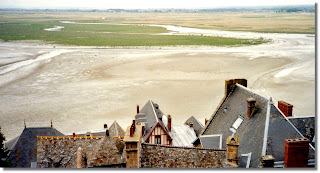 Normandy Salt Marsh
