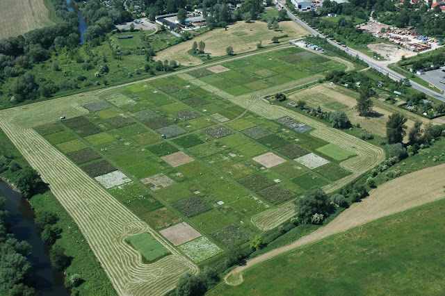 The Jena Experiment: Loss of species destroys ecosystems