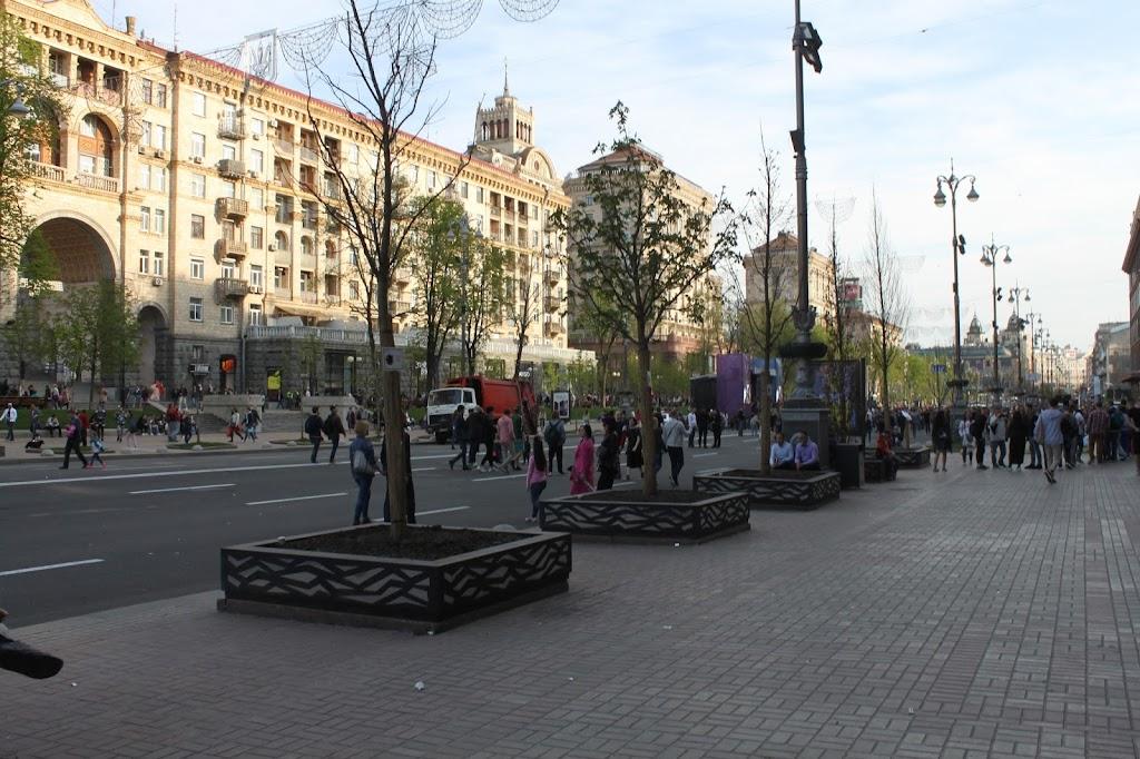 Экспериментальный участок деревьев под мэрией Киева