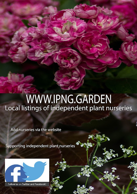 We are now on the website of the Independent Plant Nursery Guide