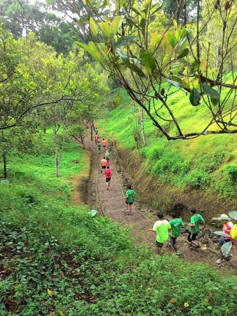 Lintasan lari di perkebunan Kalibendo, Banyuwangi.