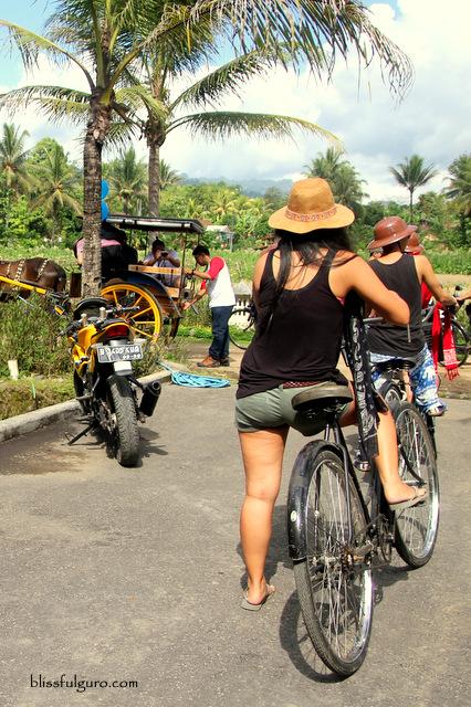Borobudur Bike Tour