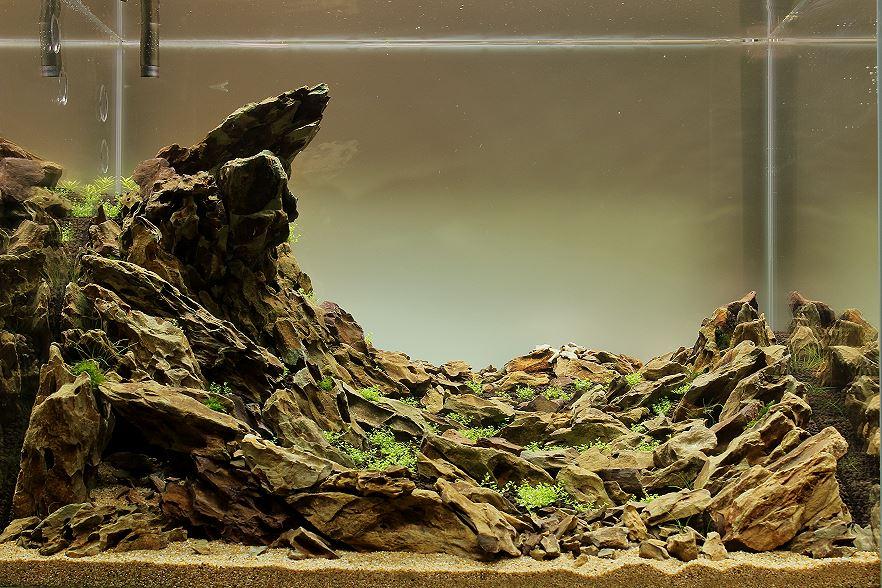 Bố cục đá cho hồ thủy sinh - đá được xếp rất đều