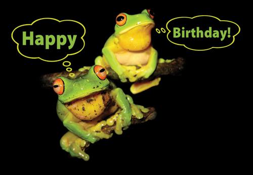 Birthday Greeting Cards Birthday Cards By Yahoo